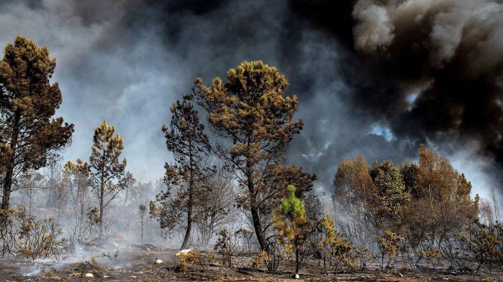 Foto: Incendio forestal en el municipio orensano de Vilamarín, en 2017. (EFE)