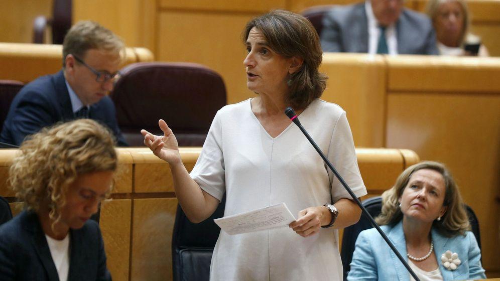 Foto: La ministra de Transición Ecológica, Teresa Ribera, en el Senado. (EFE)