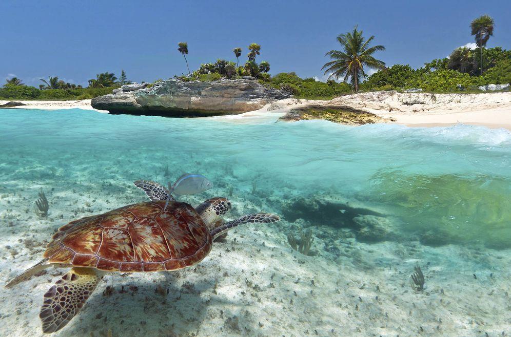 Foto: Una de las playas de Riviera Maya