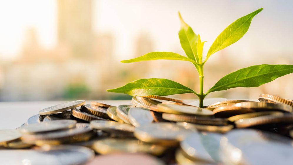 Foto: Inversión sostenible. (iStock)