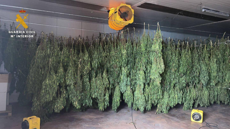 Imagen del secadero localizado. (Guardia Civil)