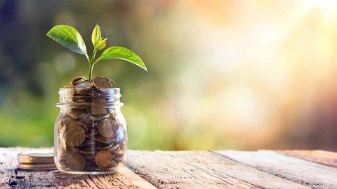 El ahorro familiar en depósitos bate récord con 800.000 M pese a los tipos al 0%