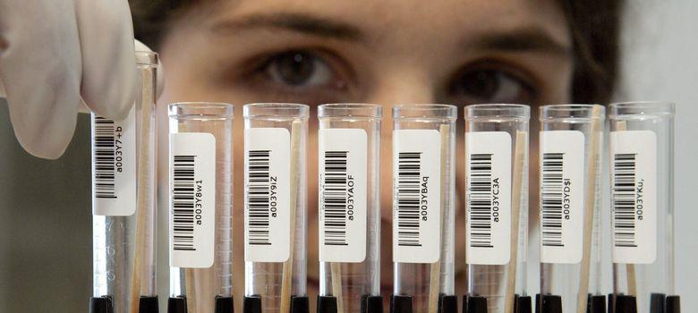 Foto: La mayoría de científicos se llevan trabajo a casa y pasan más horas en el laboratorio de las que debieran. (Efe)