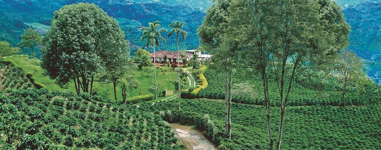 Viajes: Colombia: alójate en una hacienda, túmbate en una hamaca y ...