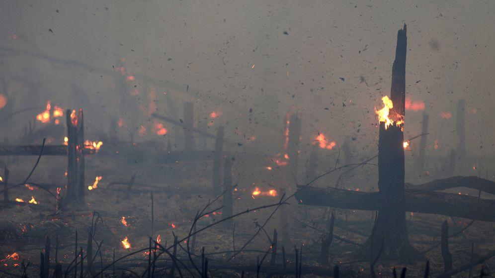 Foto: Un incendio en la selva del Amazonas (Reuters)