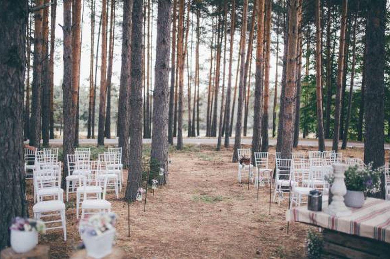 Foto: El bosque encantado de la finca Prados Riveros