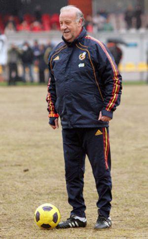 """Del Bosque admite la posibilidad de ir a la Copa América pero que aún """"está en remojo"""""""