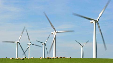 Capital Energy lidera una subasta muy repartida con Repsol y Forestalia fuera