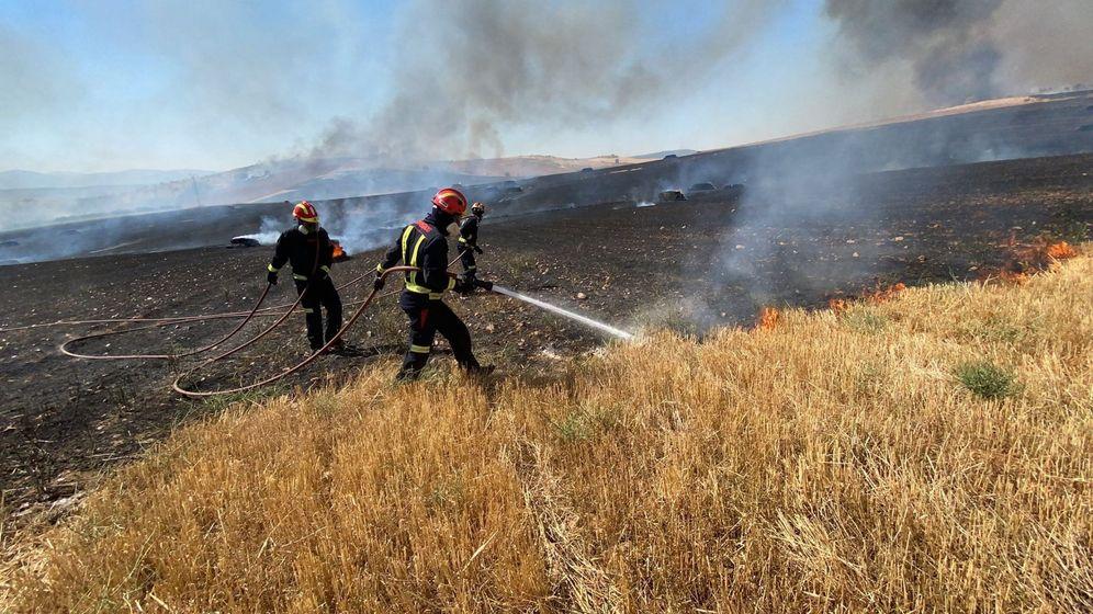 Foto: Un incendio entre Madrid y Guadalajara obliga a desalojar dos urbanizaciones. (EFE)