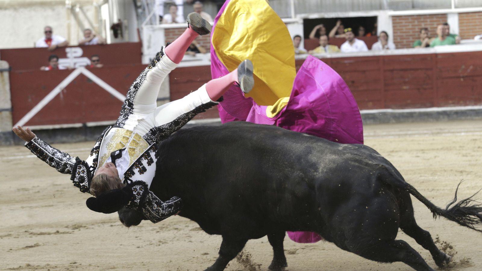 Resultado de imagen para toro sufre