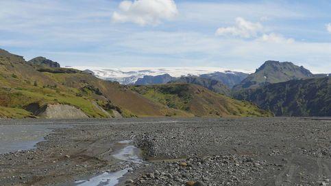 La reforestación del siglo: Islandia repuebla los bosques que arrasaron los vikingos