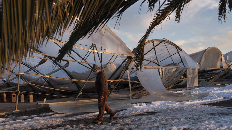 El vivero de Ángel Verbo totalmente destruido por el temporal. (Greenpeace/Pedro Armestre)