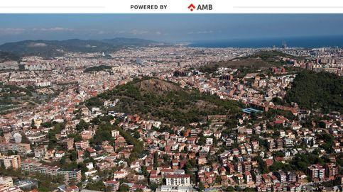 Empleo y ayudas sociales: el AMB incrementa un 19% su presupuesto para 2021
