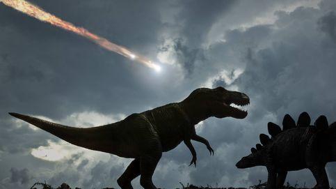 No importa el meteorito: los dinosaurios grandes iban a extinguirse igual