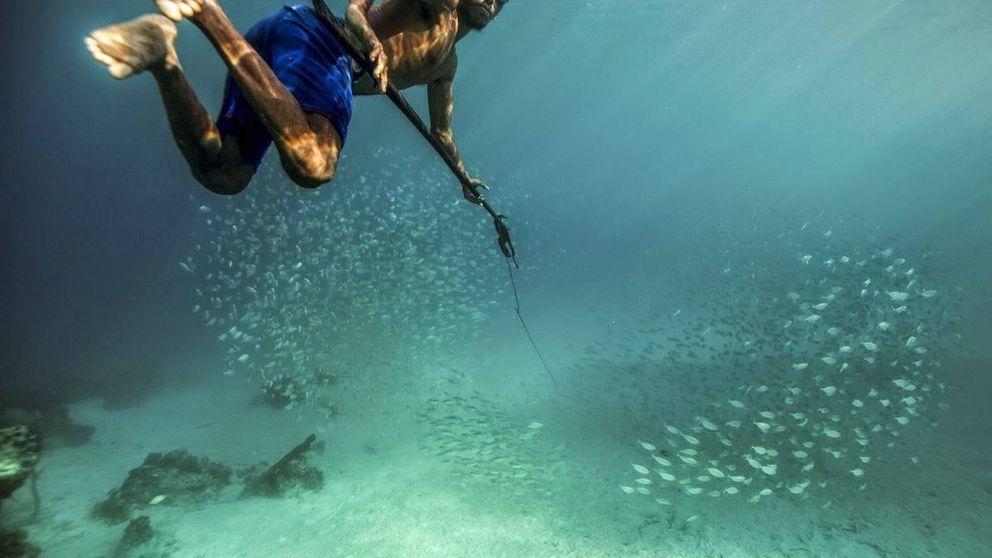 La superevolución humana: por qué esta tribu aguanta 13 minutos bajo el agua