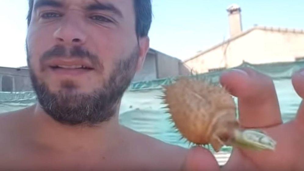 Foto: Luis Mántaras muestra en el vídeo el fruto de la burundanga y cómo debe usarse (Foto: YouTube)