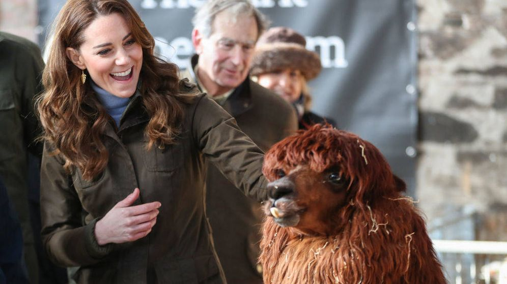 Foto: La duquesa de Cambridge con una alpaca. (Getty)