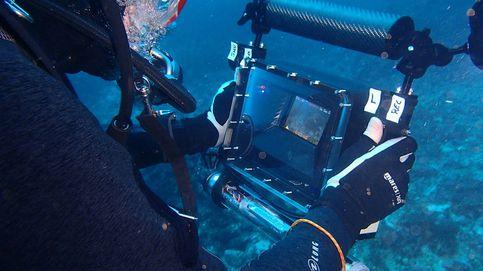Recrear el fondo marino con IA: la última idea española para salvar la isla de Cabrera