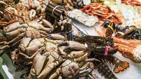 Los mejores platos para incluir el cangrejo en tu alimentación
