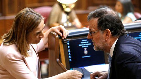 Rajoy y Pastor, con la muerte en los talones