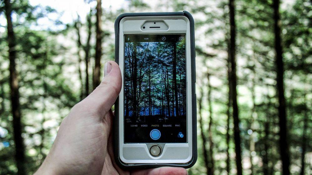 Foto: Olvídate de sacar fotos si optas por estas vacaciones: el móvil no está permitido