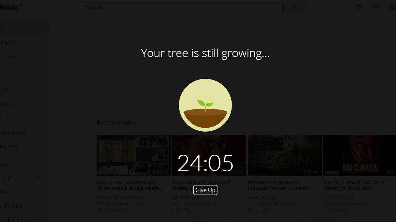 Una planta en pleno crecimiento nos bloquea el paso a nuestras webs más adictivas