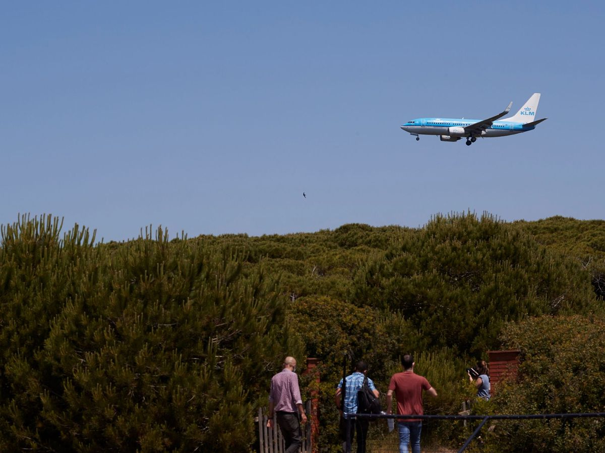 Foto: Un avión sobrevuela las inmediaciones del espacio natural protegido de la Ricarda. (EFE)