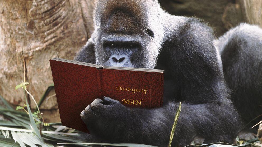 Cinco libros para sorprender a quienes creen odiar la ciencia y la tecnología