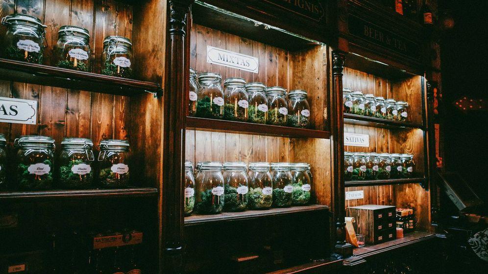 acoso-a-los-clubes-de-marihuana-en-madrid-van-más-de-20-cierres-en-2017