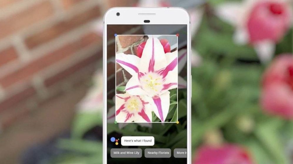 Foto: Lens lleva la inteligencia artificial a la cámara del móvil. (Google)