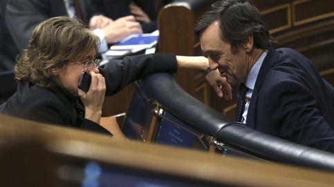 Retirada marianista: Tejerina y Hernando se postulan para irse a Bruselas