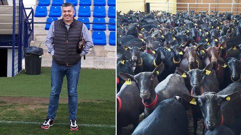 El empresario que manda a Irán cabras murcianas: Este animal está de moda