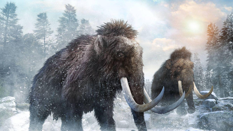 ¿Qué le sucede a la carne cuando la congelas durante 35.000 años?