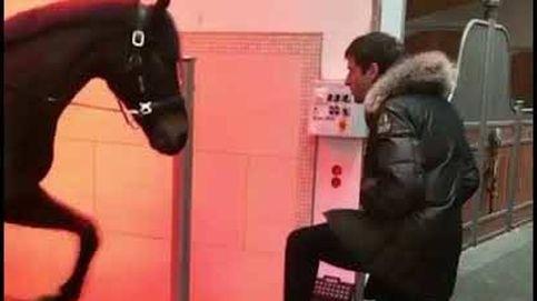 El baile sincronizado de Thomas Müller con un caballo
