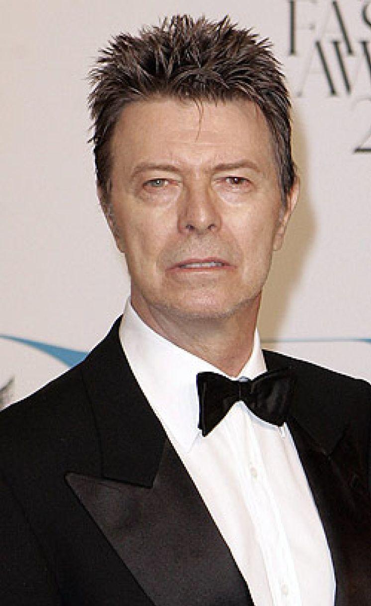 Foto: ¿Se ha retirado David Bowie? El músico no saca disco desde 2003