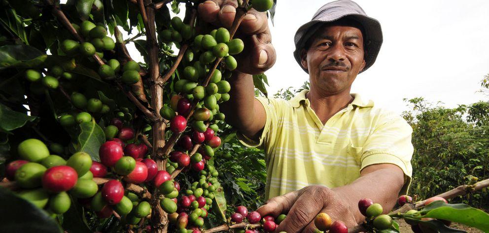Foto: Campesino en el Cauca (Fotografía Neil Palmer (CIAT)).