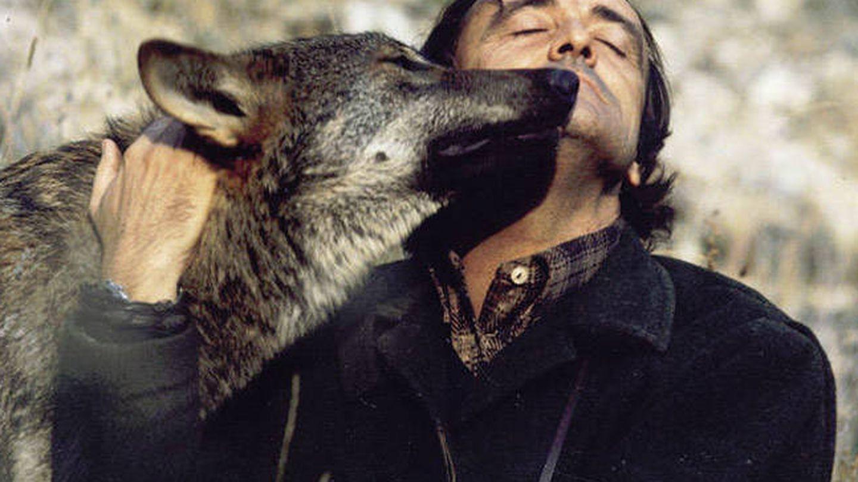 El gran naturalista y divulgador ambiental Félix Rodríguez de la Fuente ha sido el mayor defensor del lobo ibérico. (TVE)