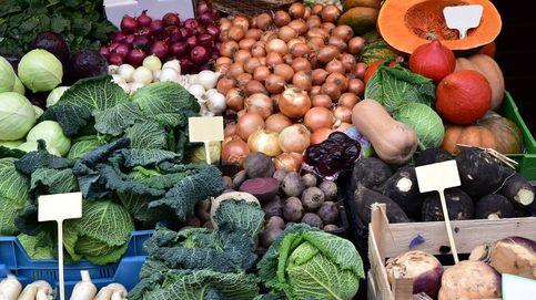 Verduras de invierno: ¿dónde probarlas?