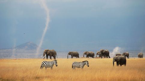 El Parque Nacional de Kenia