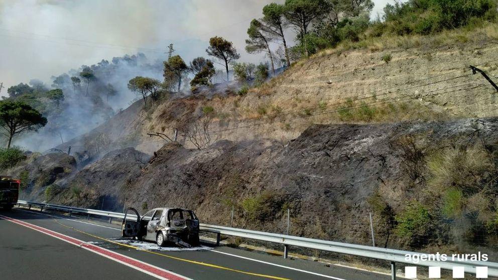 Los bomberos declaran un incendio forestal en Capellades (Barcelona)