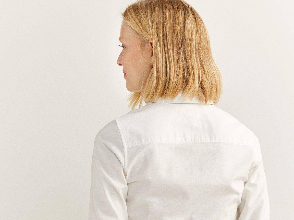 Foto: Camisa blanca de Springfield. (Cortesía)