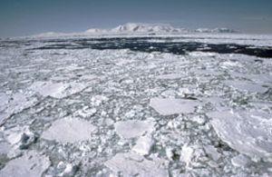 Un estudio desvela que el cierre de la capa de ozono favorece el deshielo de la Antártida