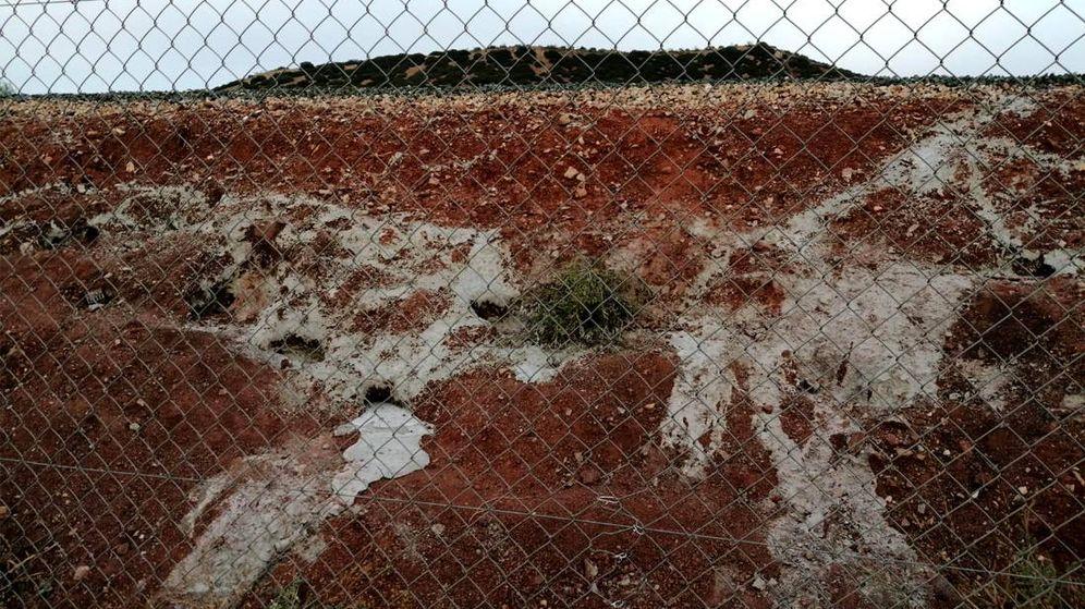 Foto: ADIF ha permitido que se sepulte a los conejos, cegando las madrigueras con cemento (Foto: Federación Andaluza de Caza)