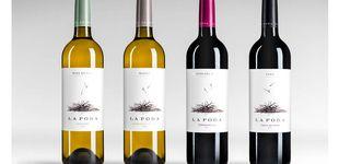 Post de La Poda, la colección de vinos que homenajea la viticultura