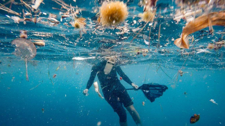 Los pellets se hallan tanto fuera como dentro del agua. (Surfrider)