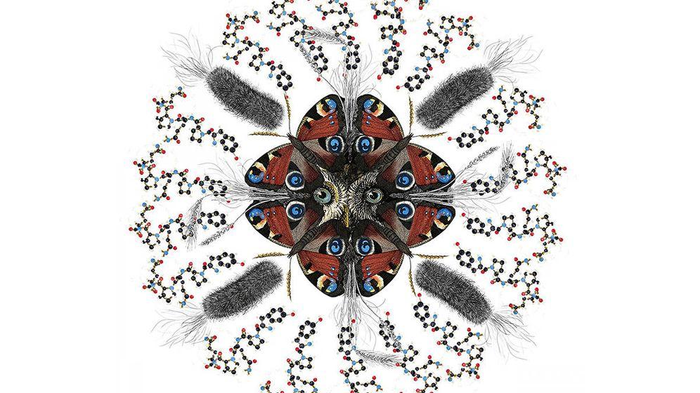 Foto: Mimetismo. Obra de arte que representa la forma en que las proteínas bacterianas imitan las proteínas gluten, causando una respuesta inmune a la enfermedad celíaca. Foto: Universidad de Monash.