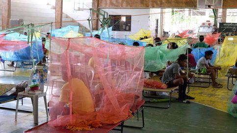 Brote de dengue en Filipinas con 456 muertes