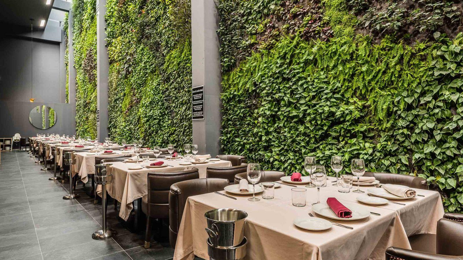Restaurantes El Jardín Vertical Interior Más Grande De