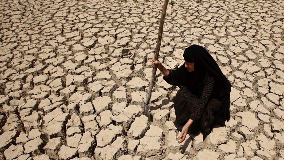 El cambio climático fue la gota que colmó el vaso en la guerra de Siria