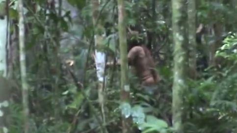 El último Tarzán: graban a un indígena del Amazonas que vive aislado del mundo